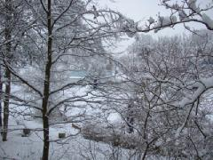 Atlanta has Snow!
